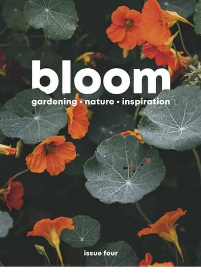 Bloom magazine cover