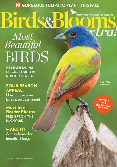 Birds and Blooms Extra digital cover