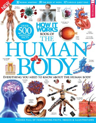 How It Works: Book of The Human Body digital cover