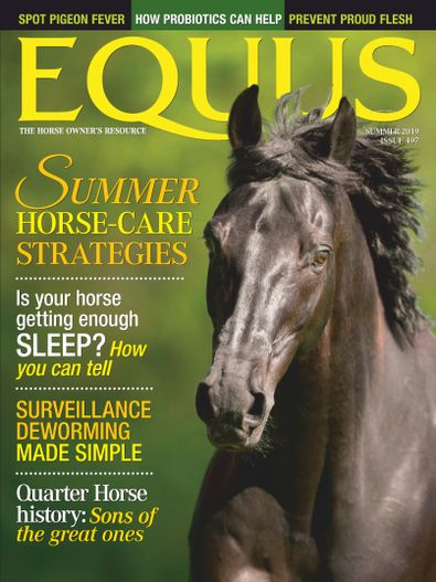 Equus digital cover