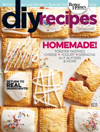 DIY Recipes digital cover